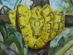 'Snake totem' or 'Creatorship'